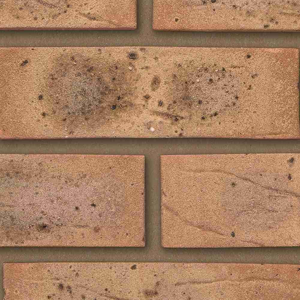 hardwicke-minster-beckstone-mixture-65mm