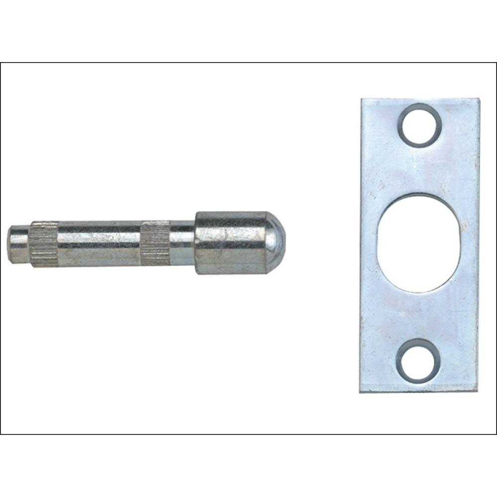 loose-hinge-security-bolts-zinc-ref-sd4840s0zp00p.jpg